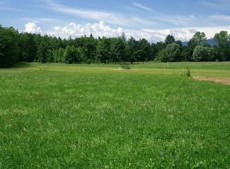 Prato, il tessile si perde nell'erba